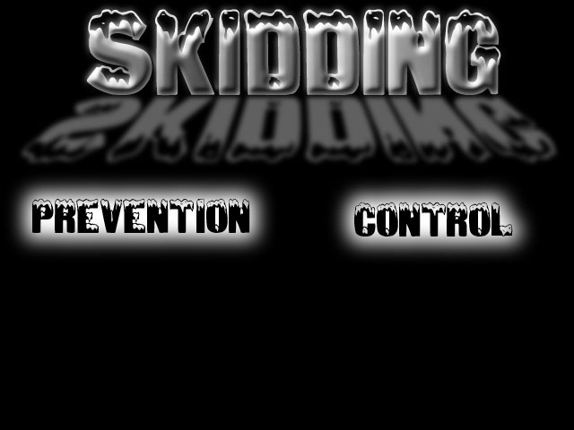 skidding.jpg